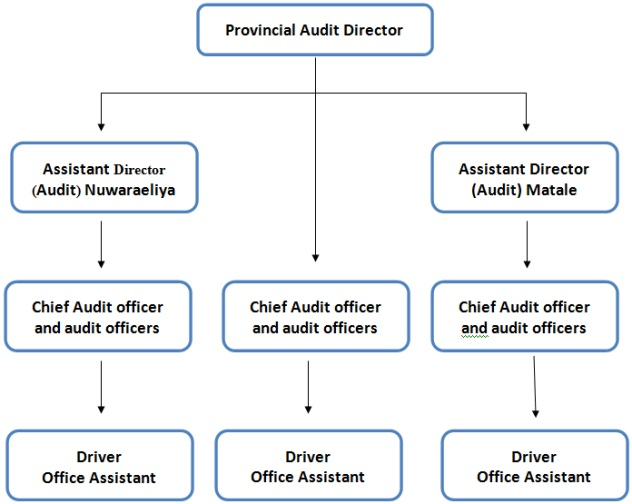 Internal Audit Organization Chart