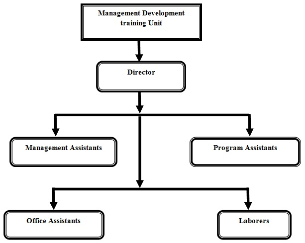 Organization Structure Of The Management Development Unit